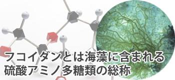 フコイダンとは海藻に含まれるアミノ多糖類の総称
